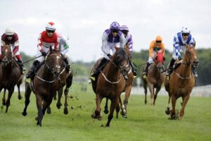 Jargon for Racing Betting Newbies